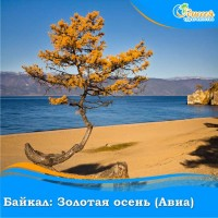 Байкал: золотая осень (Авиа)